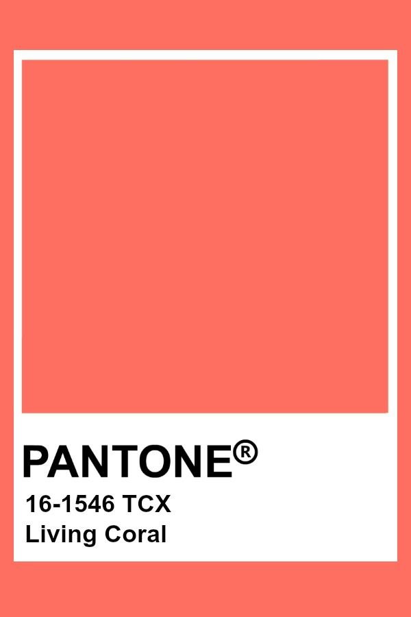 Pantone 2019 Colour of the Year - Living Coral