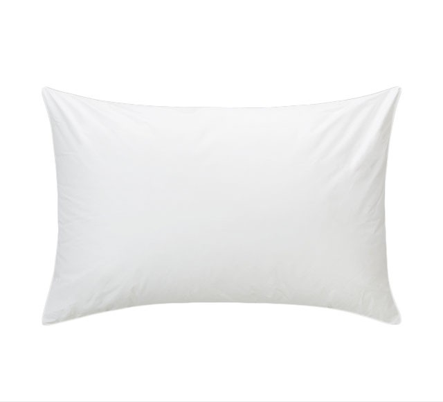 PRESIDENTIAL PILLOW